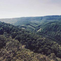 Budapest Hiking - Pilis hills