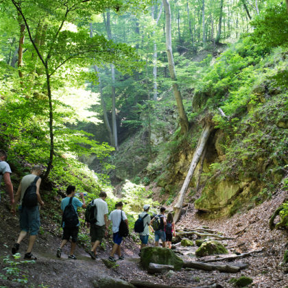 Hiking with Budapest Hikers
