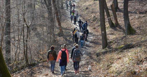 Budapest Hikers - March hike 2017 spring is here, hiking in Budapest , Pilis, dobogókő