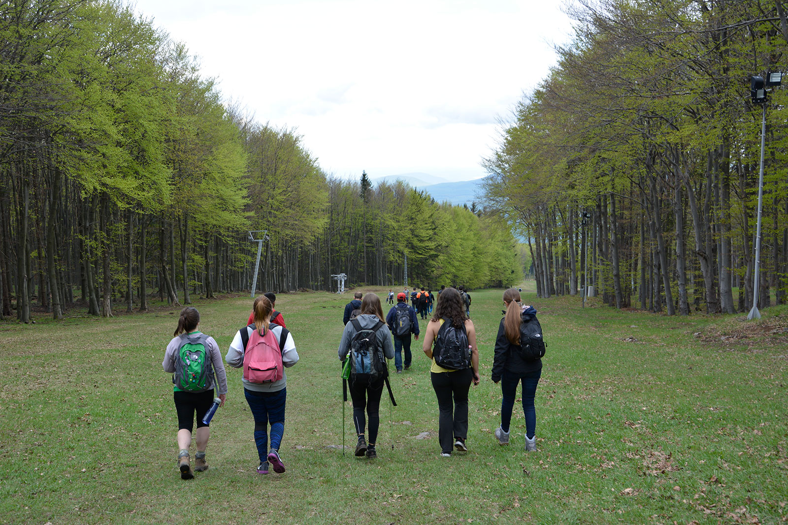 Hiking in Budapest with students, expats and locals